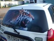 тонировка заднего стекла автомобиля